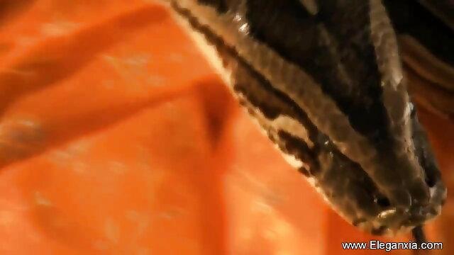 বড় সুন্দরী বাংলা দেশী এক্সক্সক্স মহিলা